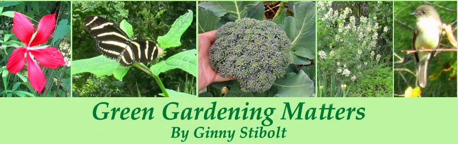 Green Gardening Matters