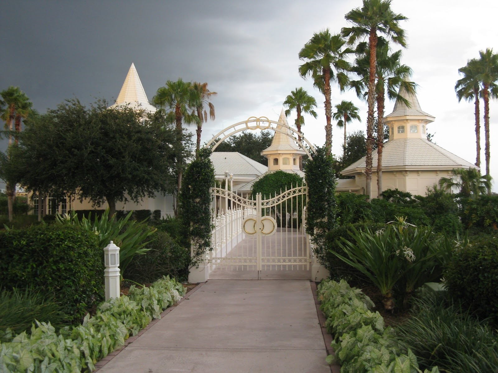A View Of The Walt Disney World Mousellaneous Monday What Would You Do For A Disney