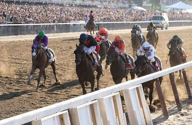 2014 belmont stakes