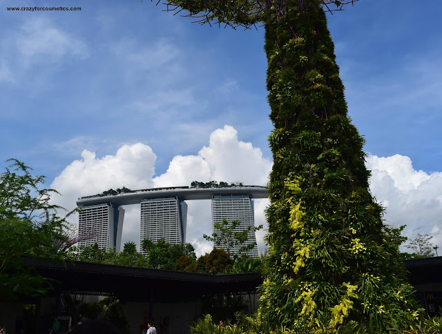 Marina Bay Sands Hotel from Gardens by the Bay