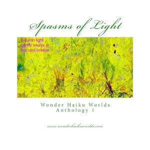 Spasms of Light, prima antologie a saitului Wonder Haiku Worlds