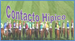 CONTACTO HIPICO