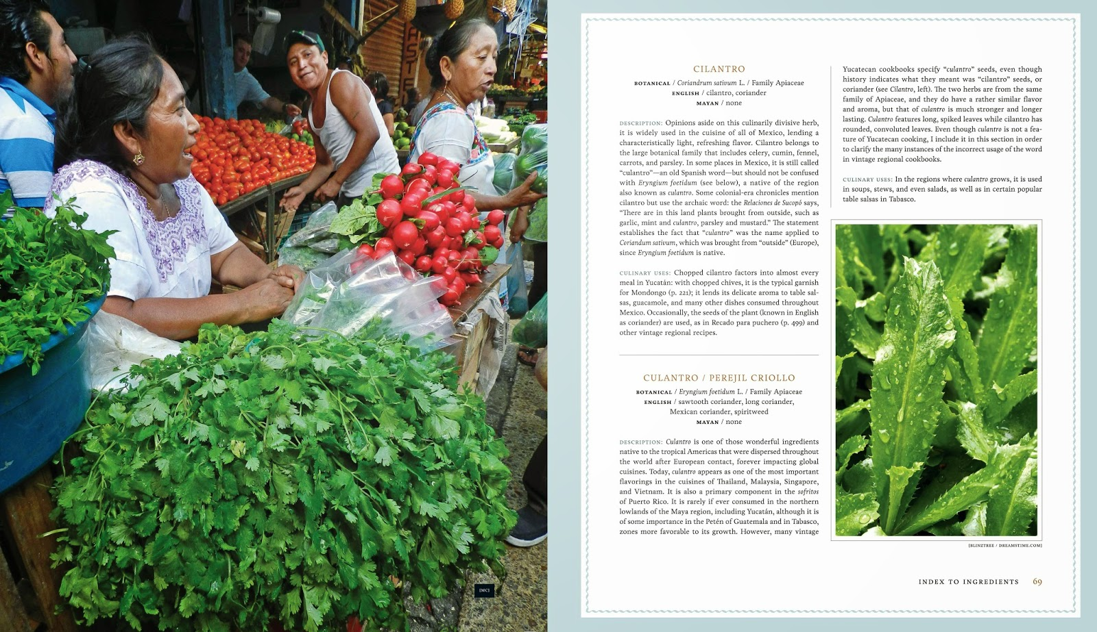 An interior spread from Yucatán