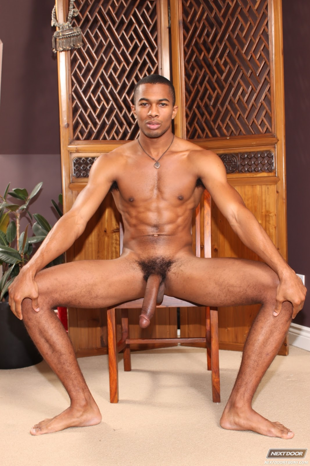 Naked sean hd video download adult scenes