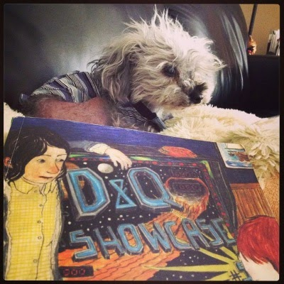Murchie perches on a pillow shaped like a flat sheep. In front of him is a trade paperback copy of Drawn & Quarterly Showcase 5. Its cover features an illustration of a dark haired child watching a red haired child play pinball.