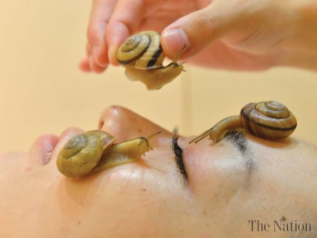 Beauty Clinic Offering 'Snail Facial' in Japan