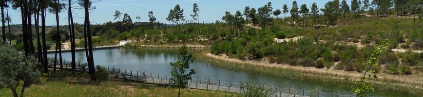 Lago no Parque São Lourenço