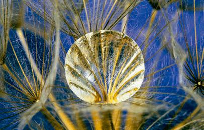 formacion de imagenes por medio de lentes: