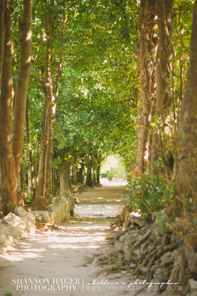 Bise Village, Okinawa by Shannon Hager Photography