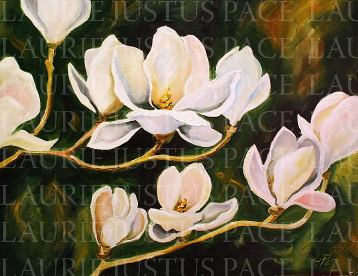 Texas Contemporary Fine Artist Laurie Pace Magnolia Flower Painting