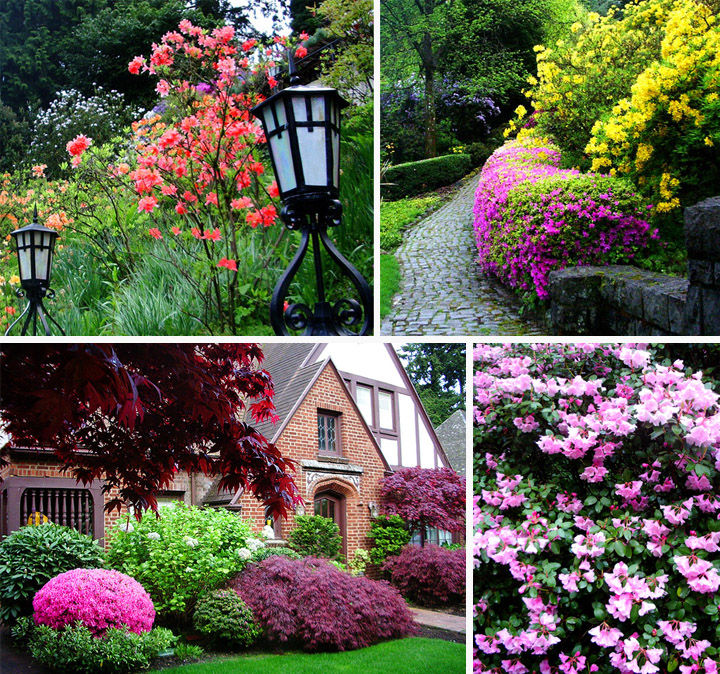 All fun here most beautiful gardens in the world for Most beautiful garden flowers