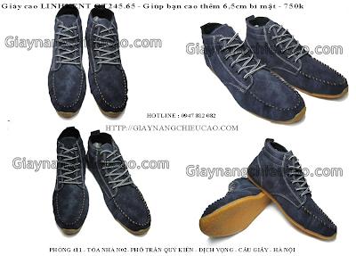 Giày nam GT245. 65