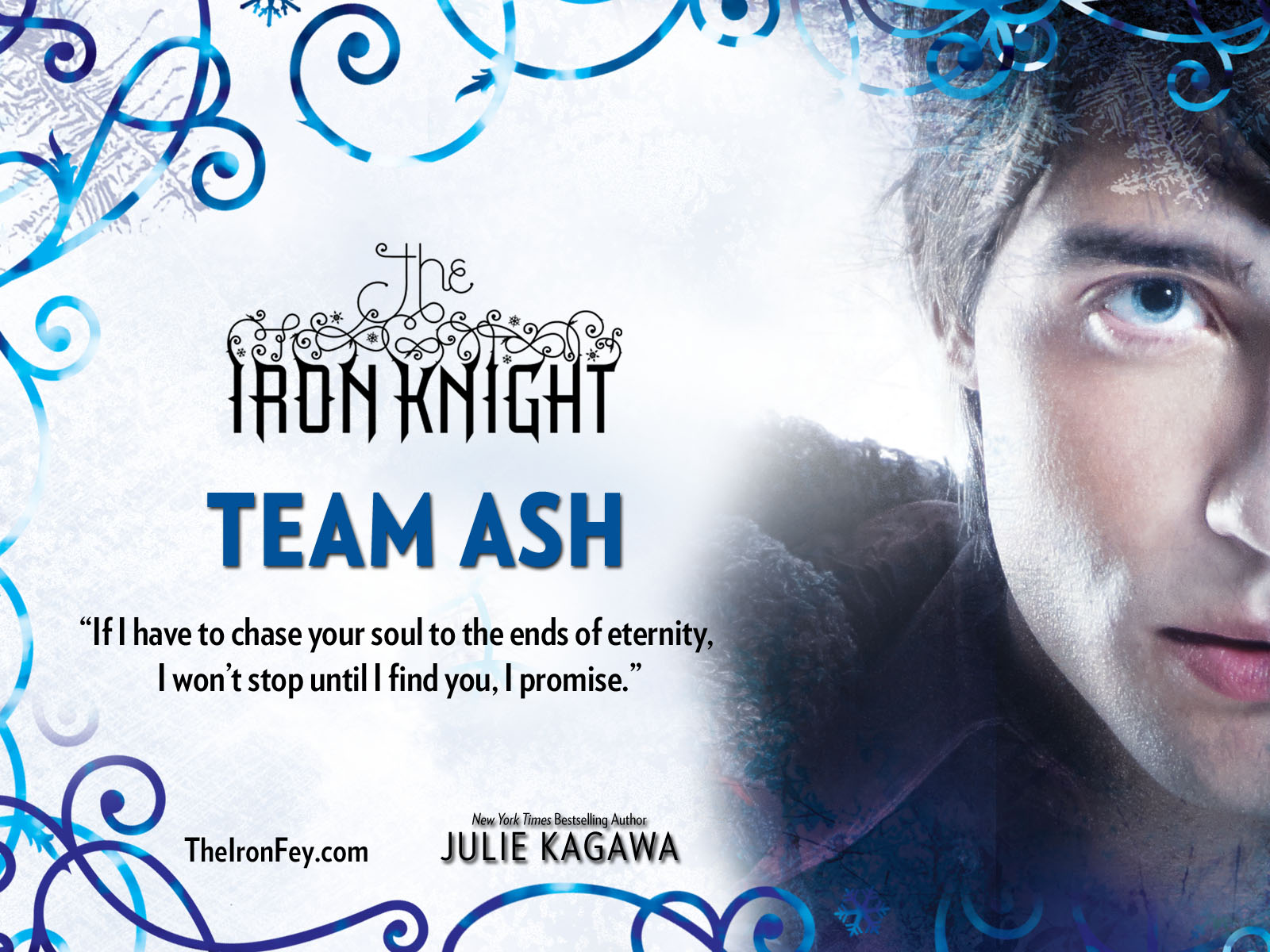 Julie Kagawa  Iron Knight arc contest  A day with Ash  or Puck