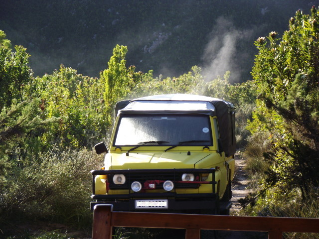 Outeniqua-Toyota-Land-Cruiser