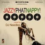 Jazzyphatnappy no 5  DJ Needles