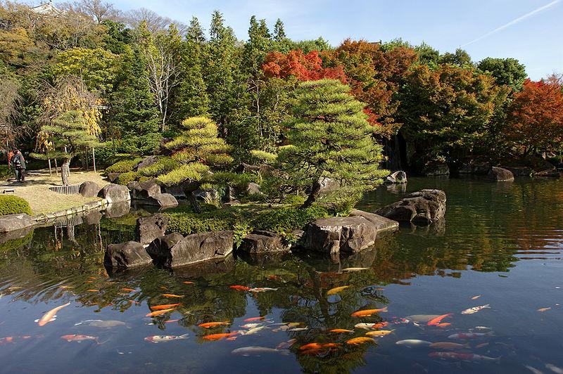 Jardim japon s carpas nishikigoi for Koi garden rio di pusteria