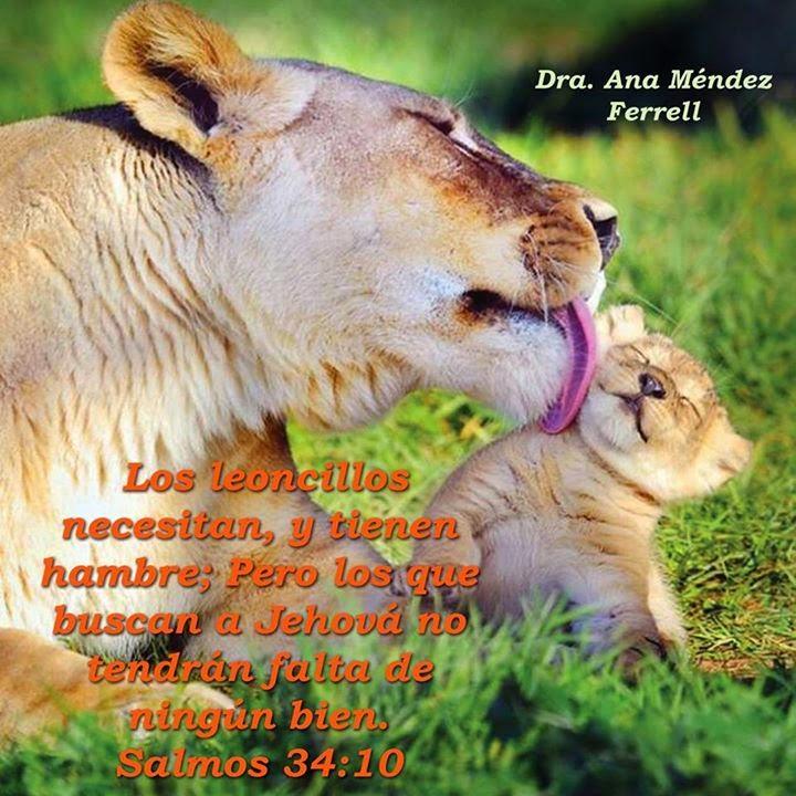 Estados Facebook Con Imágenes y Frases de La Profeta Ana Méndez Ferrell
