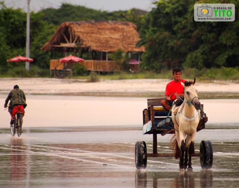 Meios de transporte da ilha de Maiandeua (Algodoal) são vistos na praia do Farol (ou da Princesinha)