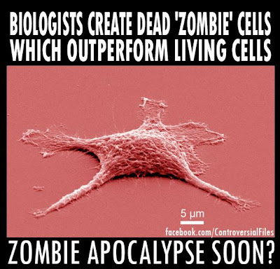 Zombie Cells