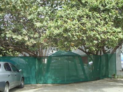 cerca de proteção para barracas
