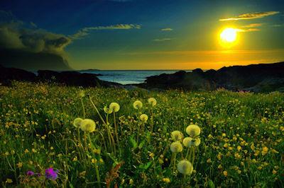 Aquí es donde inician todos los sueños - Paisaje en el atardecer - Sunset