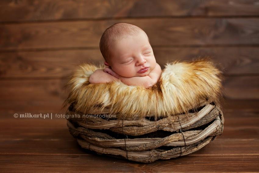 sesja noworodkowa, sesje zdjęciowe dzieci, fotografia niemowląt, profesjonalne studio fotograficzne  w poznaniu