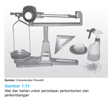 Alat dan bahan percobaan pertumbuhan dan perkembangan