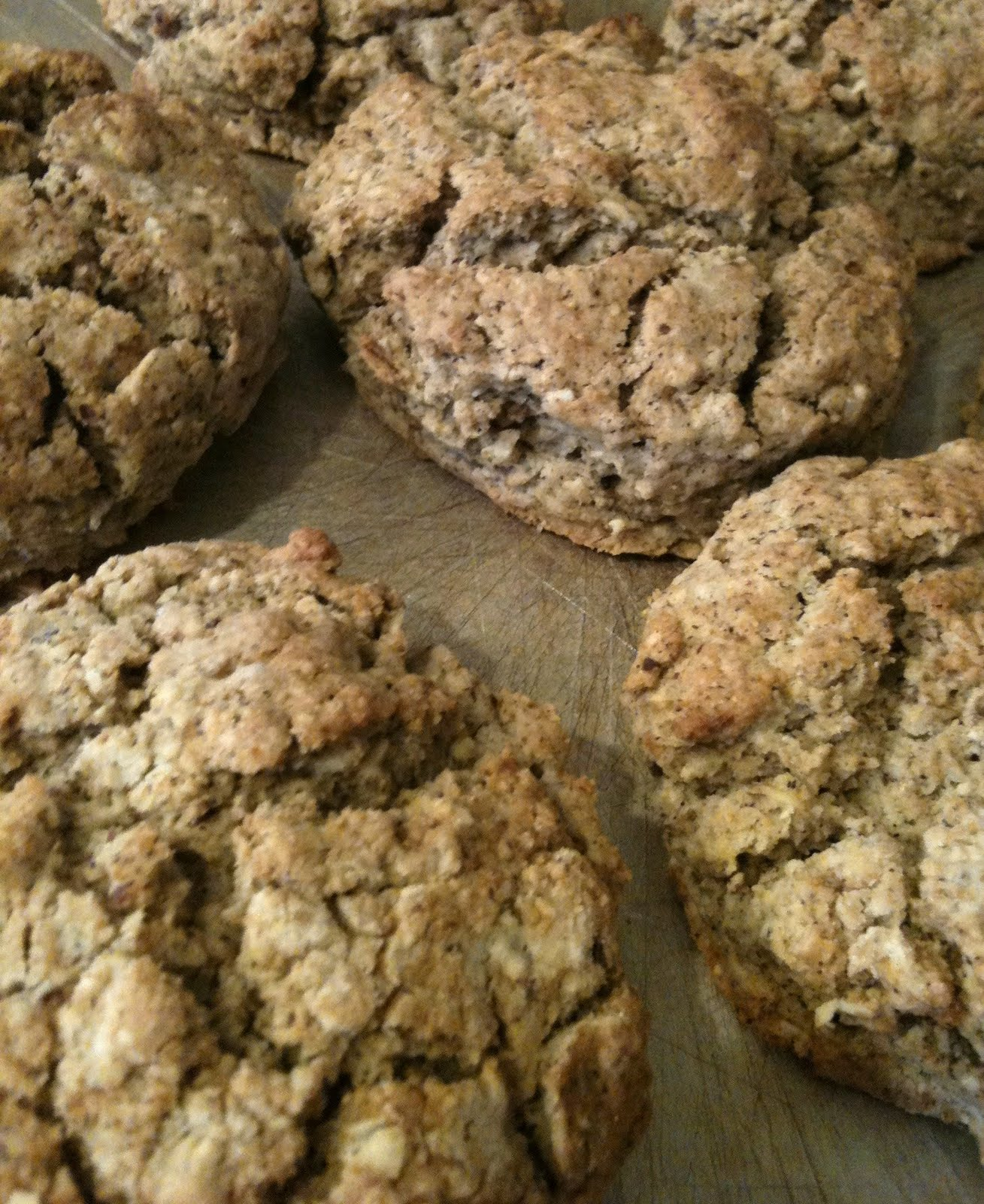 A Shared Family Recipe Journal: Maple Syrup Oat Scones ...