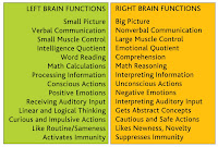 Brain Function2