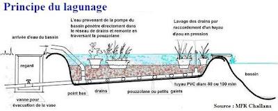 comment faire un bassin de jardin