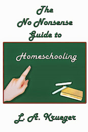 The No Nonsense Guide to Homeschooling