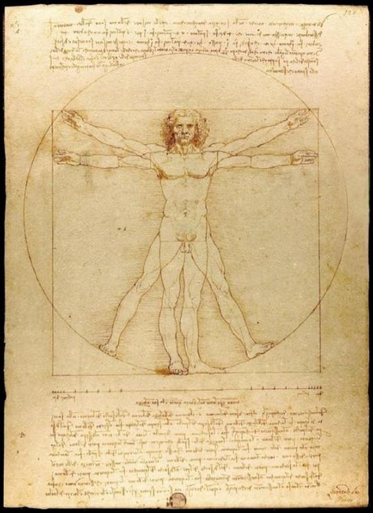 varias imagens do Homem Vitruviano