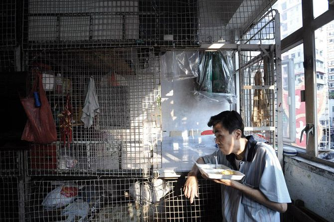 Brian Cassey Photographer. The Cage Dogs of Hong Kong