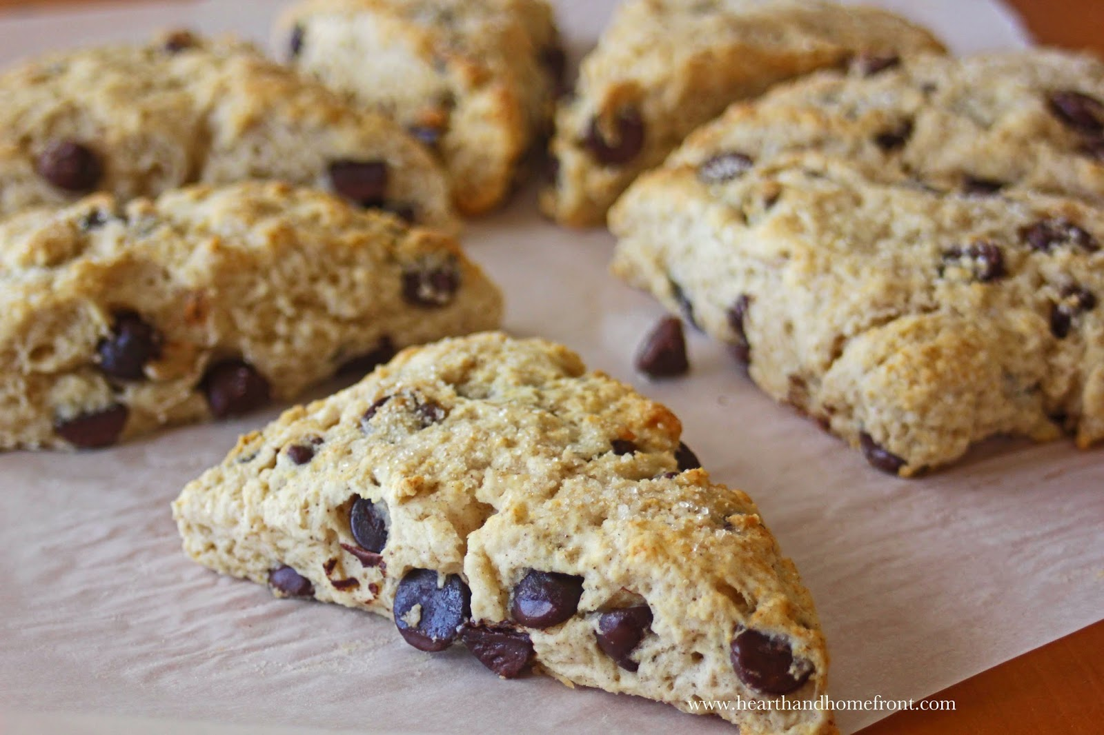 Hearth and Homefront: Dark Chocolate Chip Scones