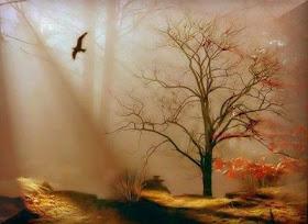 A liberdade dos pensamentos que me encantam.!