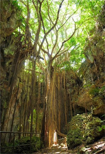 沖繩-景點-gangala之谷-okinawa-gangala