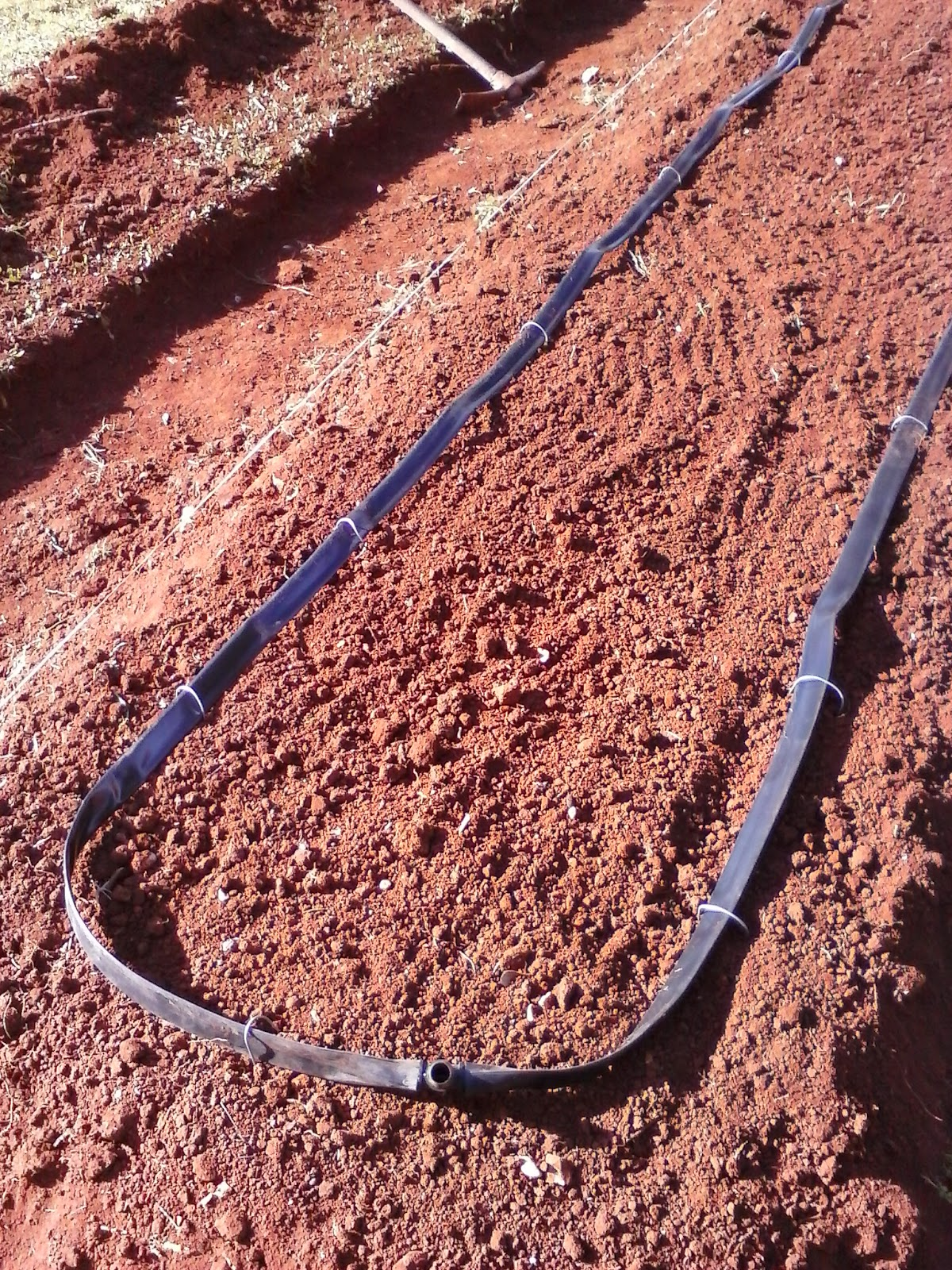 Orto sinergico neretino impianto di irrigazione for Irrigazione a caduta