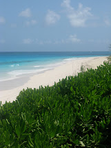 Nippers Great Guana Cay