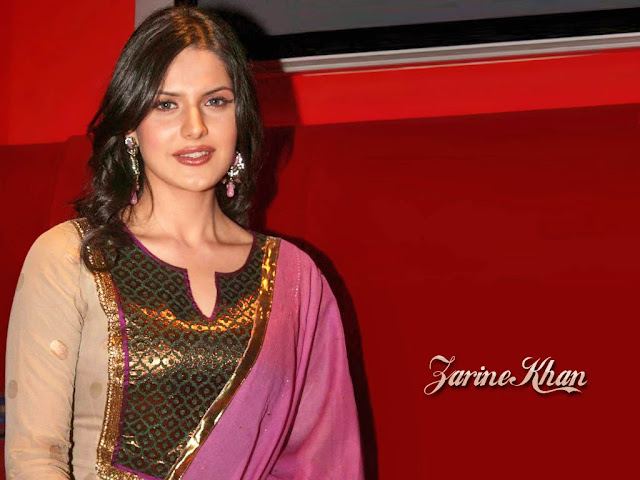 Indian Celebrities Zarine Khan Hot HD Photos 1024x768