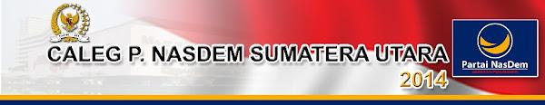 Caleg Partai Nasdem Sumatera Utara 2014