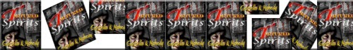 http://2espritsspirits.blogspot.ca/p/chapter-5-competition-kevin-was.html