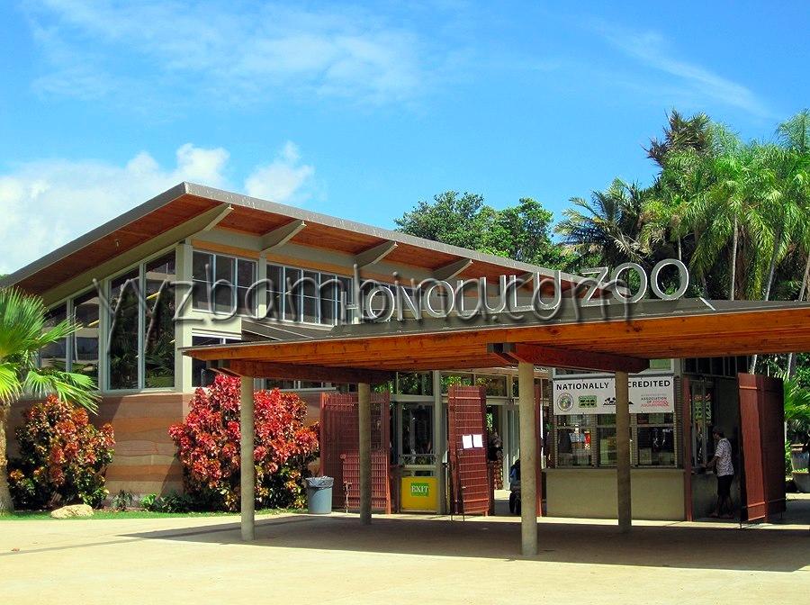YYZ Bambina Honolulu Zoo hnlbambina