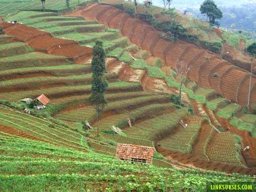Gunung Pangalengan
