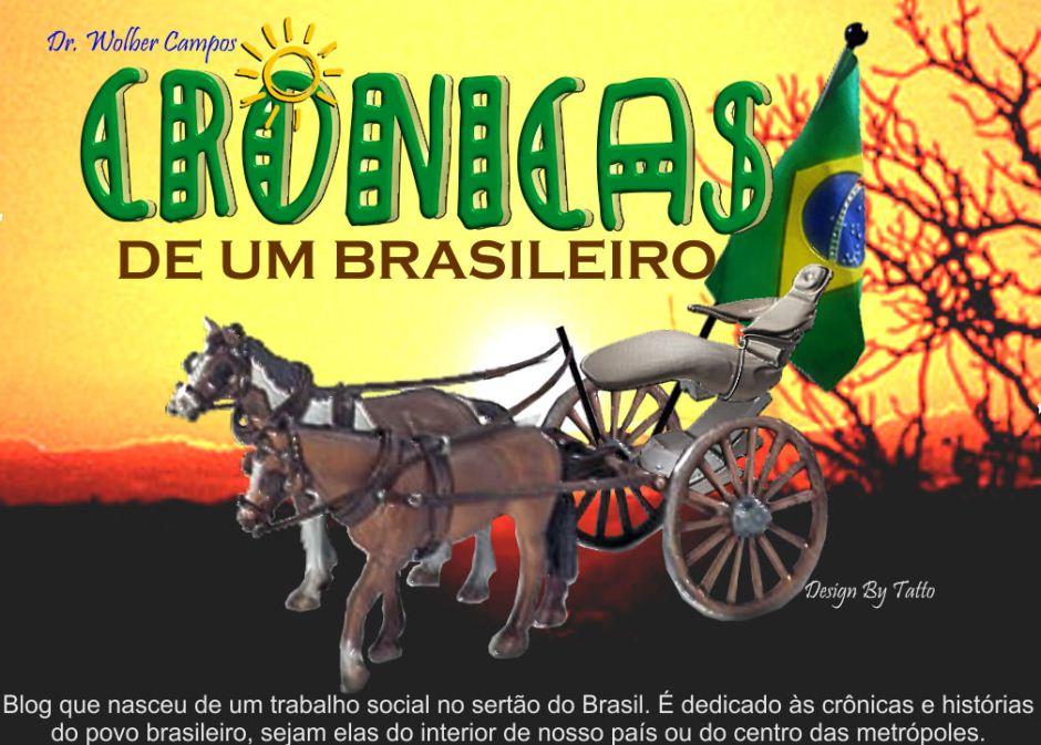 <b>Crônicas de um Brasileiro</b>