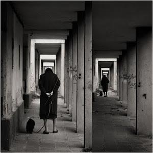 FOTO / OBRA DE ARTE