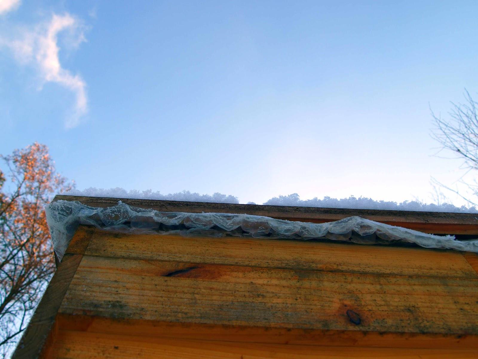 imkerei karlshorst was machen die bienen im winter. Black Bedroom Furniture Sets. Home Design Ideas