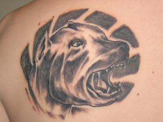Dog Tattoo Design Photo Gallery - Dog Tattoo Ideas