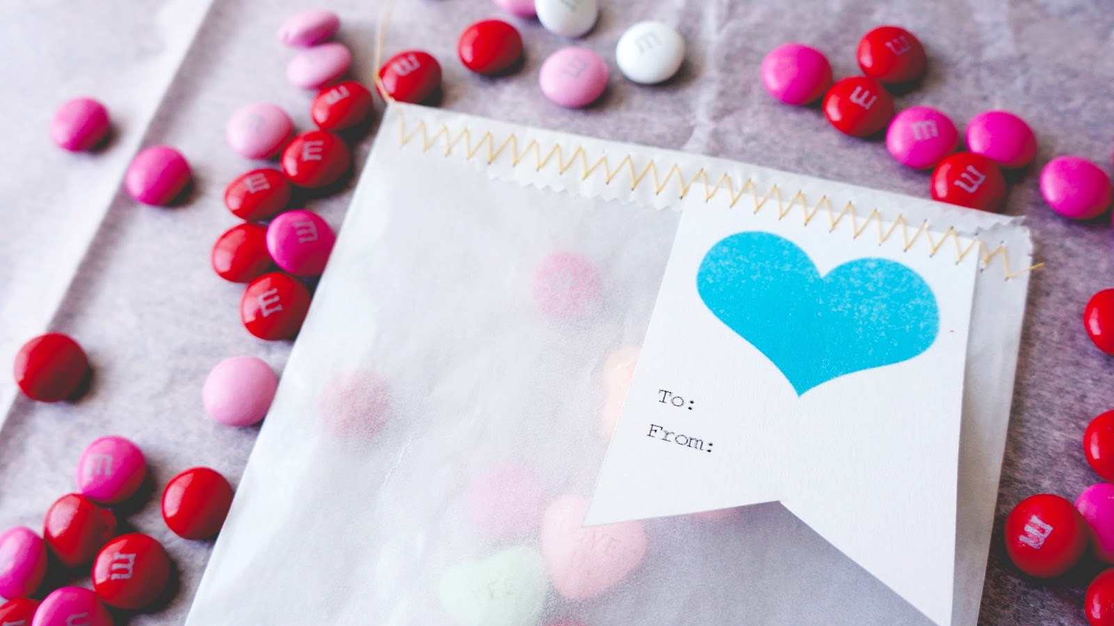 diy vellum valentine goodie bags harvesting love events - Valentines Goodie Bags