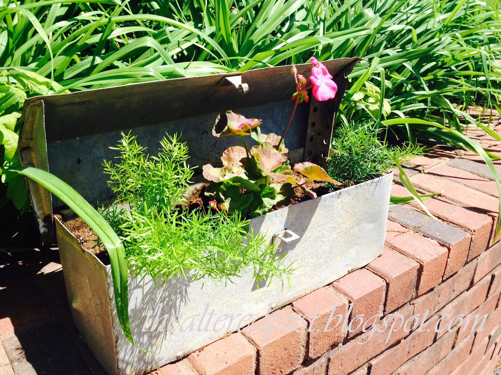 metal tool box turned flower box