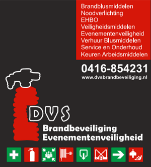 dvsbrandbeveiliging.nl